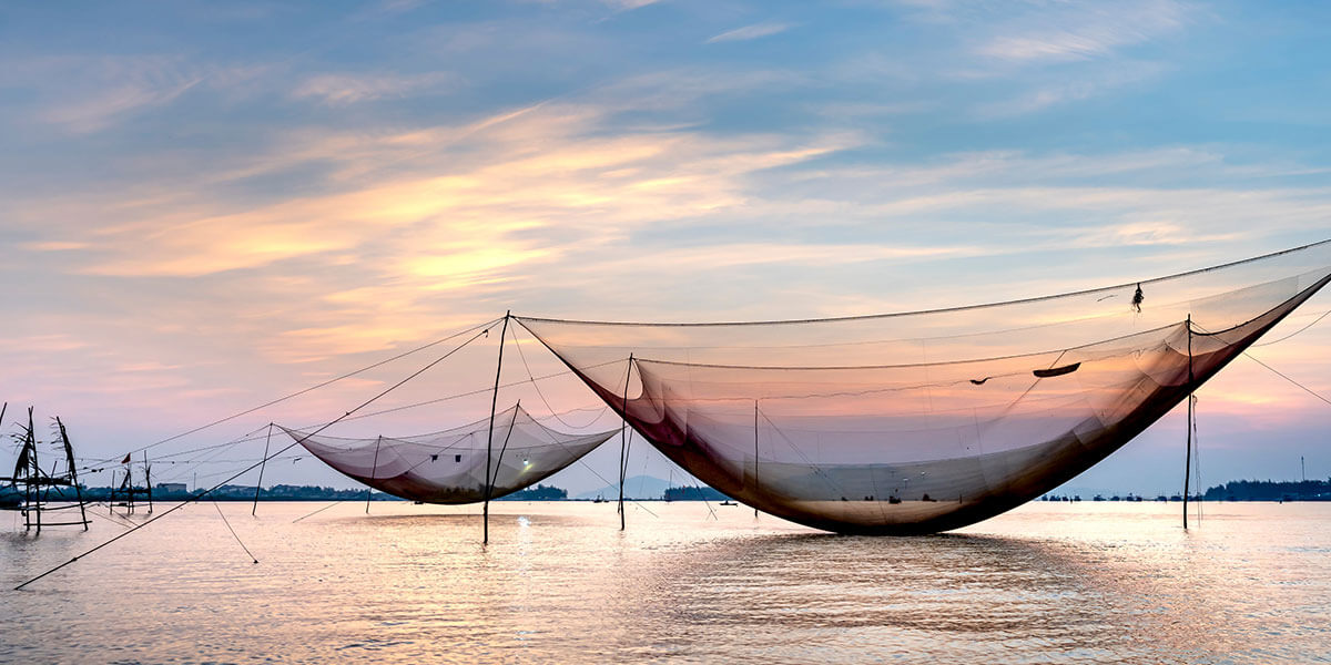 balık-ağı